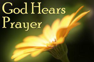 Prayer Meeting - Thursday 31st January 8.00pm